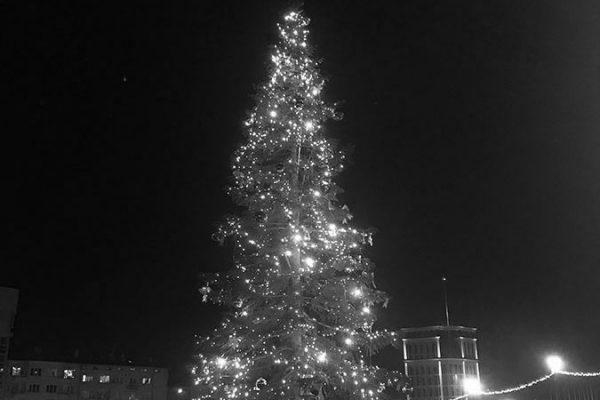 Sofia's Christmas Ghost